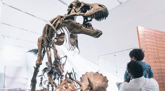 چگونه از موزه های تورنتو رایگان بازدید کنیم؟