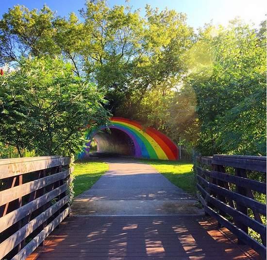 این پارک زیبا در وسط تورنتو قرار دارد