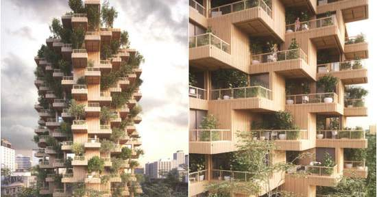 خانه درختی یک نوآوری در ساختمان سازی تورنتو
