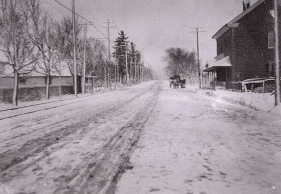 آنچه در مورد خیابان شپرد تورنتو نمیدانید